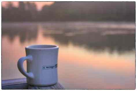 Lake Mug 2 Snapseed LR