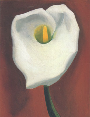 okeefe lily