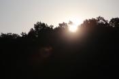 Sunrise over the cove.
