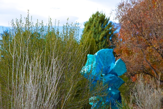 Chihuly 035