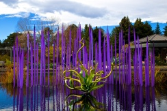 Chihuly 036
