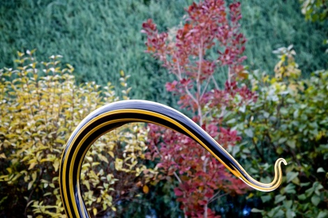 Chihuly 043