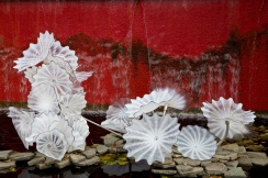 Chihuly 046