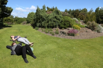 Taylor and Wendy nap and sun themselves on the lawn at Royal Botanic Gardens, Edinburgh.