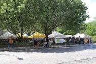 The open market we enjoyed.