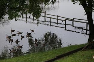 2015 07 02 Lake of the Ozarks Flooding