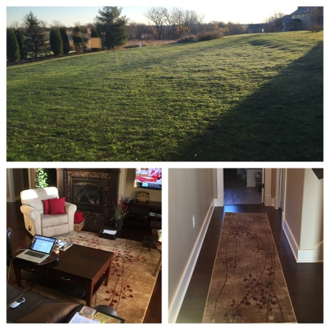 rugs and lawn