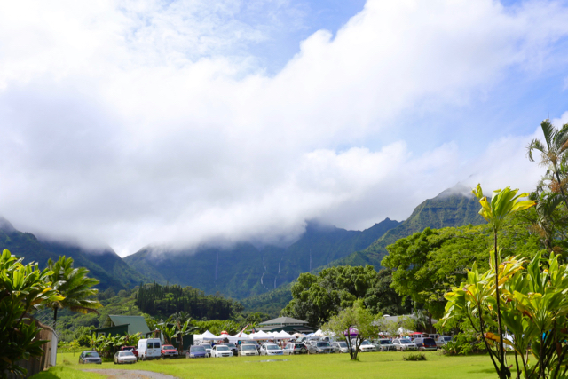 The farmers market in Hanalei is a little different environment than the farmer's markets back in Iowa.