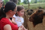 Lydia said she wanted to kiss the goat. Fortunately, this was as close as she got.