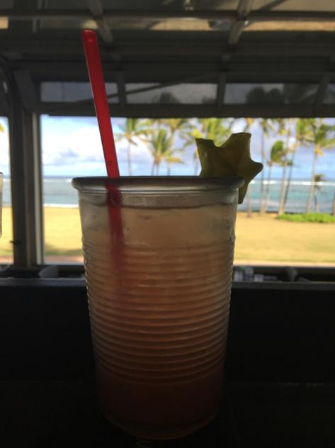 kauai-day-8-6