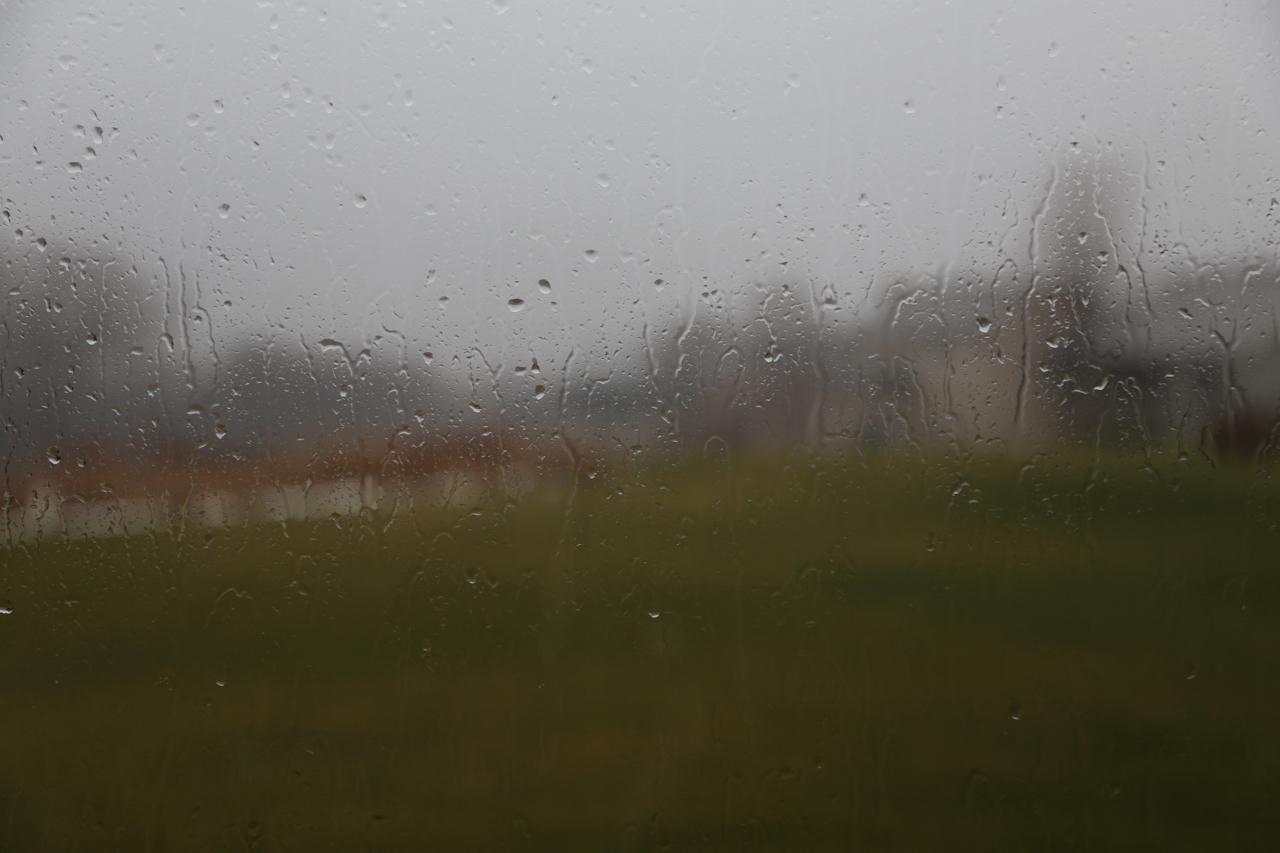 Christmas Day was really gloomy. Unseasonably warm (50s F) but very, very rainy.