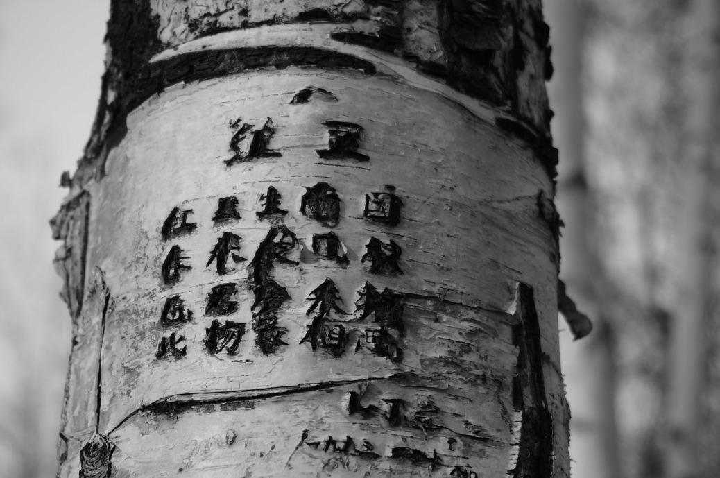 Tree Poem Engraving