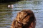 2017 05 Lake with VLs and VWs - 21