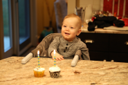 Chocolate or Funfetti cupcake. Which will he choose?