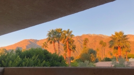 The view from our guest room porch in Palm Springs.