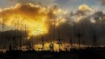 San Diego Harbor sunset.