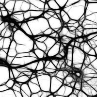 Captive Brain