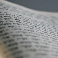 Beneath the Text